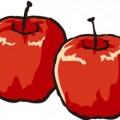 二つ並んだりんご