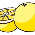 美味しいなフルーツ